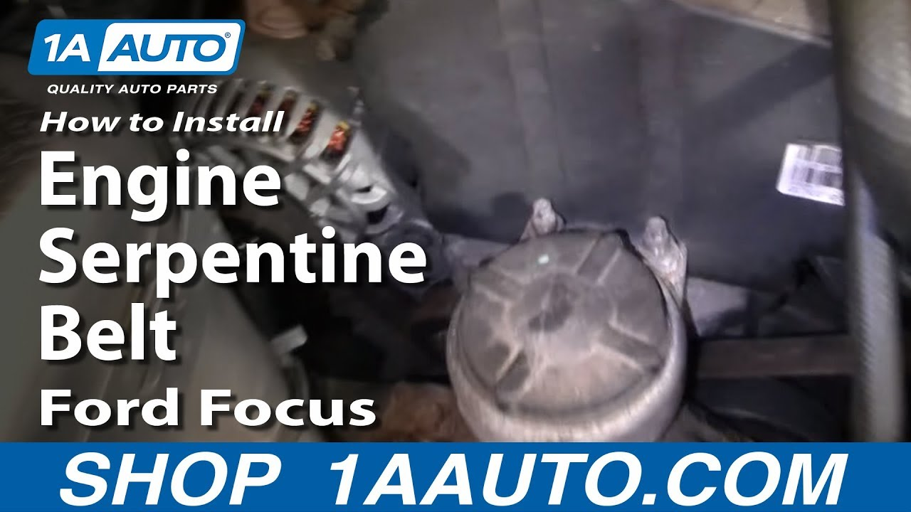 2008 Ford Focus Serpentine Belt