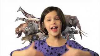 ASL Animals Song - Song only
