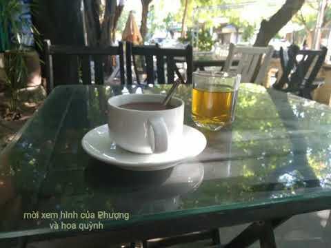 Ltpastk - hoa quỳnh nở - 11-9-2017