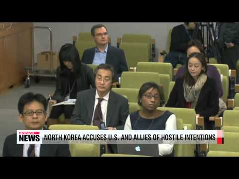 UN panel calls for international efforts on North Korean human rights