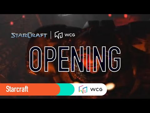 Starcraft: Brood War Opening