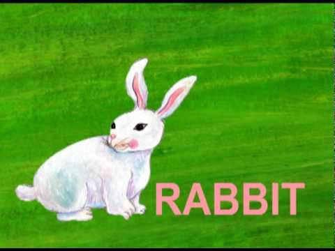 """R"" is for Rabbit -6II8oDdIblQ"