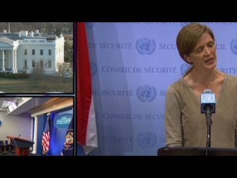 U.N. ambassador addresses Ukraine crisis