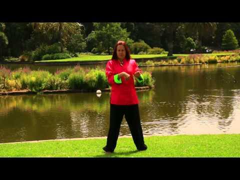 Wing Chun Form Jee Shin Sil Lim Tao Advanced