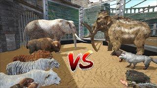 ARK:Team hiện đại vs Team tiền sử:Voi Thường vs Voi Ma-mút | Hổ vs Sabertooth |