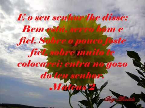 Sonda me Playback (Marco Aurélio)