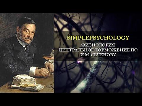 Физиология. Центральное торможение по И.М. Сеченову.