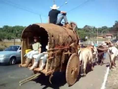 Carros de boi rumo a Trindade Parte 2
