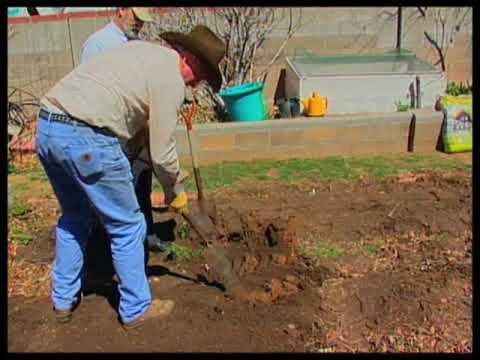 How to prepare garden soil for planting youtube for Preparation of soil