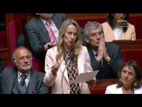 Mme Constance Le Grip - Circulation en Ile de France