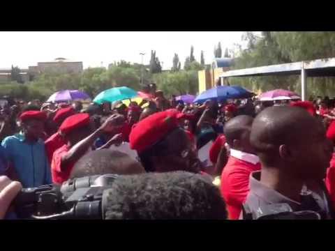 Malema at EFF rally