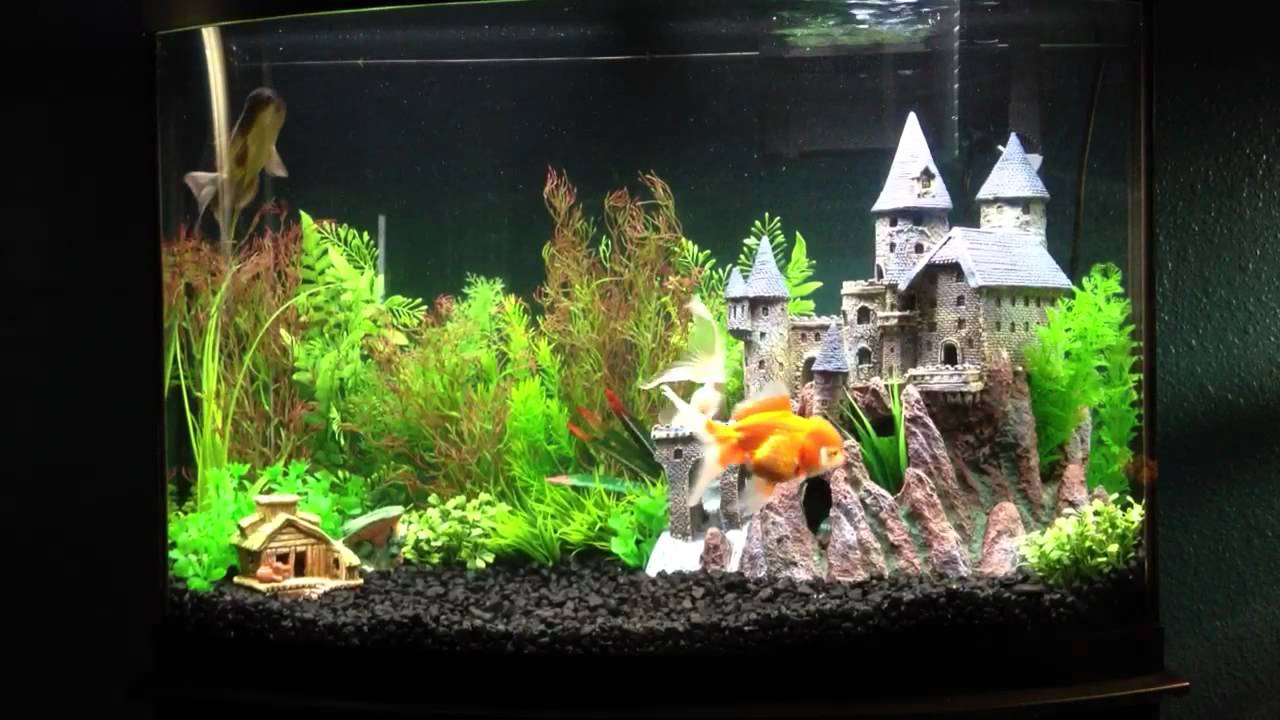 Fish tank decorations harry potter harry potter fish for Aquarium decoration