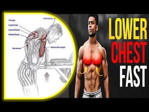 3 BEST LOWER CHEST EXERCICES / musculation focus  du bas des pecs