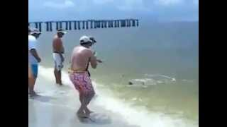 [Pesca Extreme Big Fish Saltwater Fishing!  ?????!]