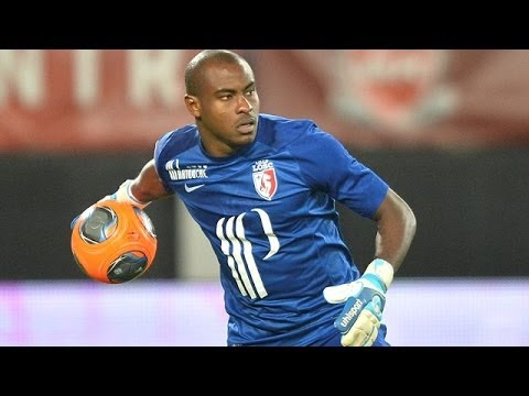 Vincent Enyeama - Best Saves - 2013-2014 ||HD|| LOSC Lille