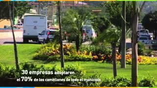 Adoptan 30 empresas los camellones de Puerto Vallarta
