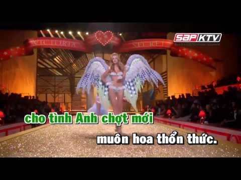 Xuan Yeu Thuong Remix Dam Vinh Hung HD