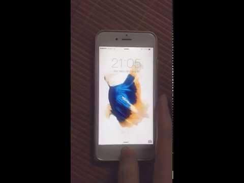 Set Wallpaper iphone 6s fish on iphone 6(hình nền động hình cá trên iphone 6s cho iphone cũ 5, 6)