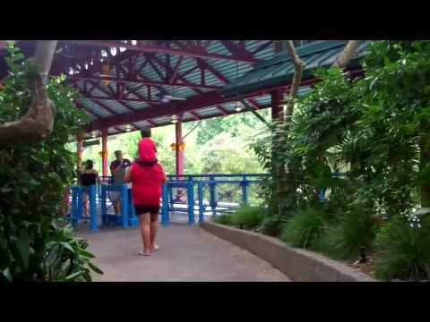 Rafiki's Planet Watch at Disney's Animal Kingdom! Walt Disney World 2011 HD