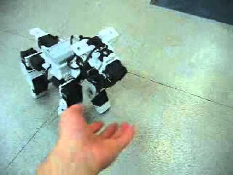 Nh Nh Trong Video Robotis Bioloid Comprehensive Kit Puppy
