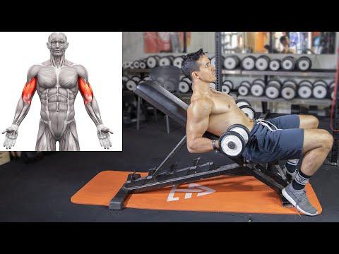 Prendre de la masse aux Biceps avec 5 exercices !