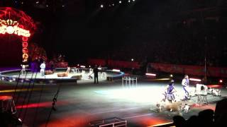 Circus Trip - Ringling Bros. and Barnum & Bailey - Misc. Animal Show