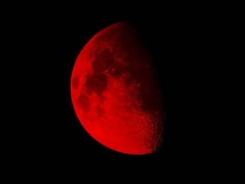 Video 'Blood moon' : Rare Total Lunar Eclipse caught on tape 15 - April - 2014