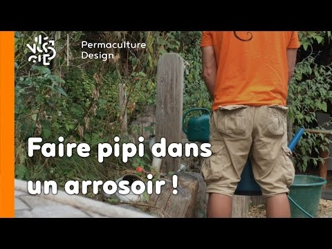 La minute permaculture #1 : POURQUOI FAIRE PIPI DANS UN ARROSOIR?
