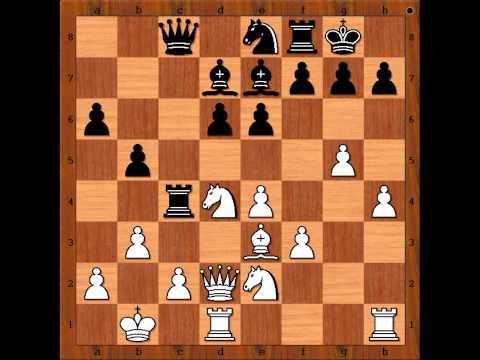Viswanathan Anand  vs Jan Timman 2004