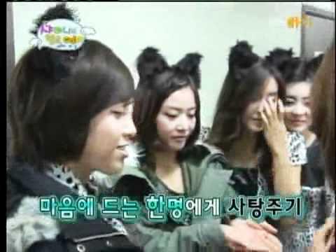 [Vietsub]  Shinee [100126] Hello Baby - T-ara cut