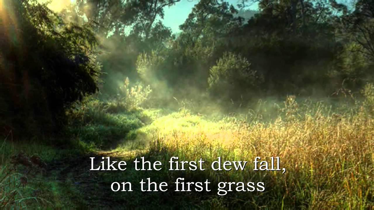 Grass lyrics