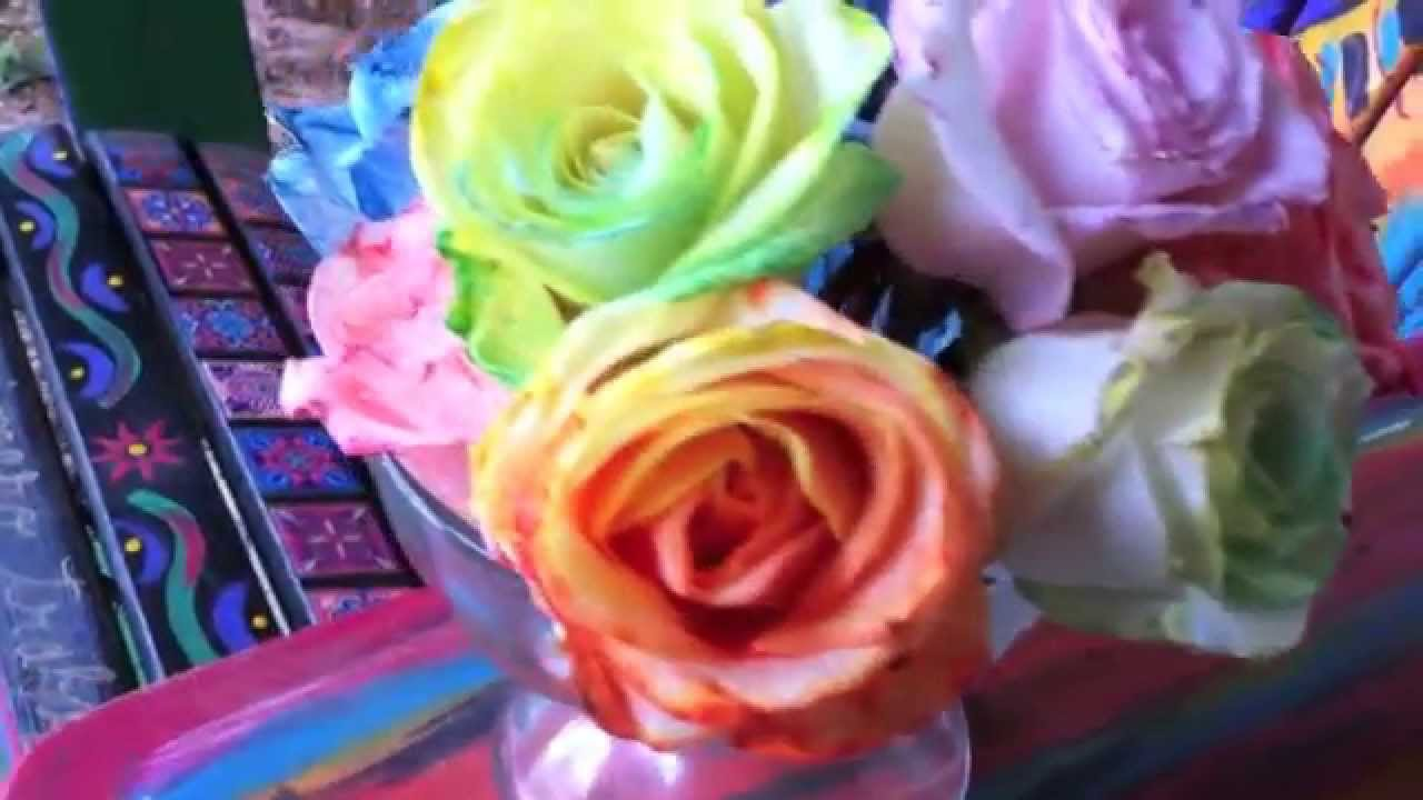 How to tie dye roses diy rainbow roses and flowers for How to make tie dye roses