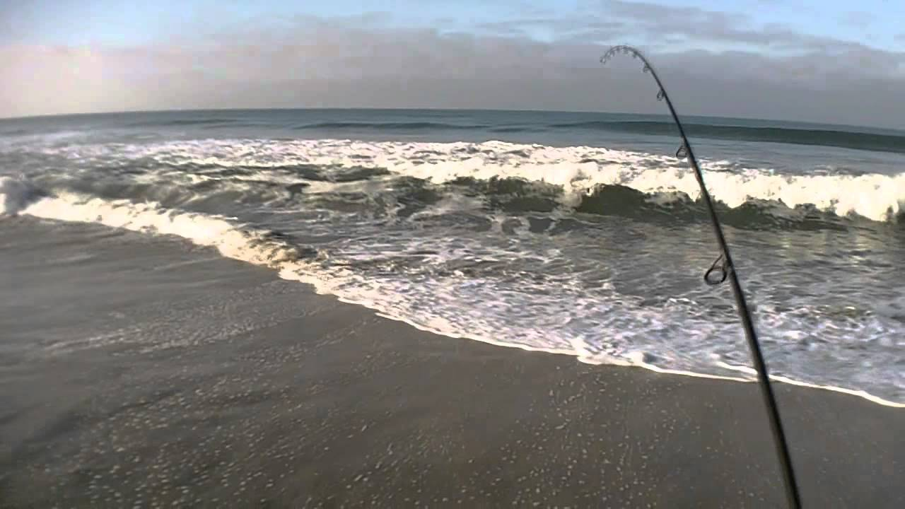 Surf fishing in oceanside and carlsbad on 2 18 12 youtube for Surf fishing southern california
