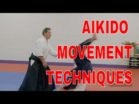 AIKIDO Movement Techniques Christian Tissier pt9