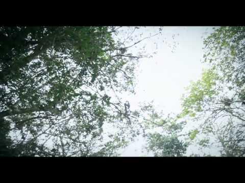 Atumpan ft. Guru - - Akonoba