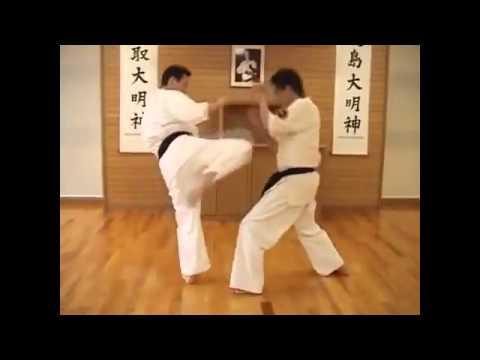 Các đoạn phim của Hội những người yêu thích võ thuật