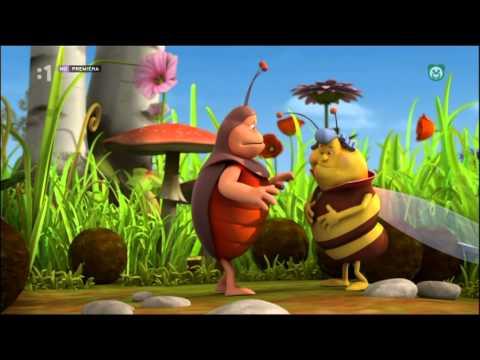 Včielka maja - Úľový jaif