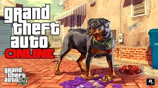 GTA 5 ONLINE: ROCKSTAR BANNING MODDED LOBBY! MONEY GLITCH / DNS SERVER MOD GET YOU BANNED! BANHAMMER