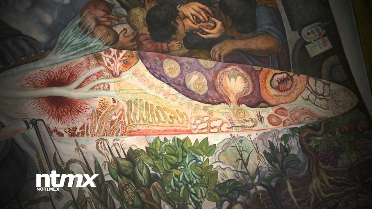 for Diego rivera mural new york