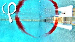 Fun with Vortex Rings in the Pool