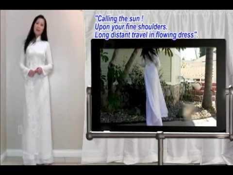 Ao Dai Trang - White Vietnamese Traditional Dress
