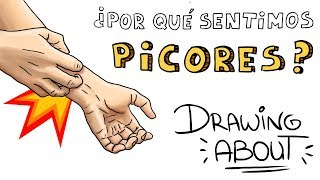 ¿POR QUÉ SENTIMOS PICOR? | Drawing About con @GlóbuloAzul