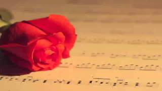 Instrumental Hindi Music Songs 2013 Playlist Bollywood