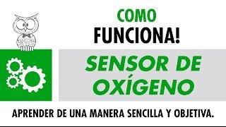 COMO FUNCIONA – Sensor de Oxígeno – Español