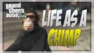 Want more GTA 5 Online <b>Funny</b> Moments, GTA 5 Mods and more <b>Funny</b> GTA 5 Videos? Then subscribe for <b>Funny</b> GTA 5 Videos!</div><div class=