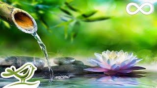 Relaxing Piano Music: Sleep Music, Water Sounds, Relaxing Music, Meditation Music ★47🍀