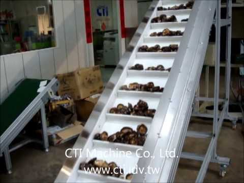 Semi-Auto Weighing and Packaging Machine P115E-V for Mushroom