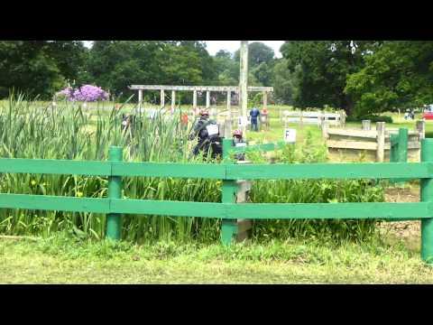 27 Mick Ward GBR), FEI Para Equestrian, Sandringham Horse Driving Trials 2013, Marathon O1