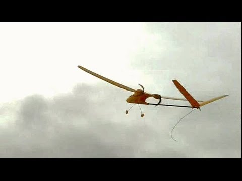 SDM Yellow Bee RC Plane (Harbor Freight) - YouTube