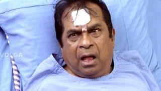 Brahmanandam Hilarious Comedy Scenes